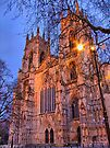 York Minster - Evening Light - HDR by Colin  Williams Photography