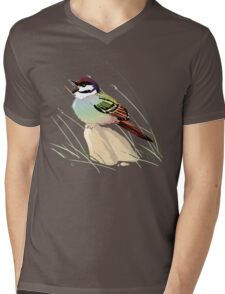 Rainbow Song Sparrow Mens V-Neck T-Shirt