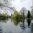 Beddington Park by Lennox George