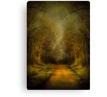Unknown Footpath Canvas Print