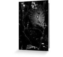 Web of Falls Greeting Card