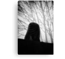 Owl salt shaker shot with Holga lens and Nikon D7000 (3) Canvas Print