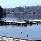 Lake Guntersville, Alabama by WildestArt