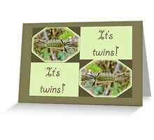 It's Twins Birth Announcement - Banded Tussock Moth Caterpillar Greeting Card