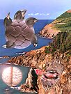 Migration to Dolphin Coast. by Andrew Nawroski