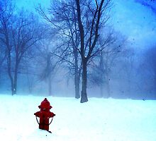 Red Hydrant by Mary Ann Reilly