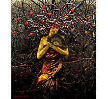 THE EMPRESS (tarot card) Photographic Print