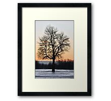 Endure Framed Print