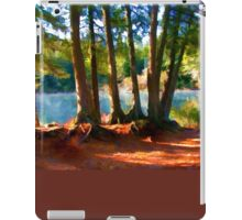 Path to the Lake Through the Woods iPad Case/Skin