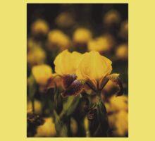 Yellow and Maroon Irisis Kids Tee