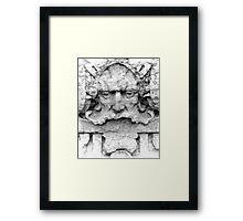 Facade Sculpture Framed Print