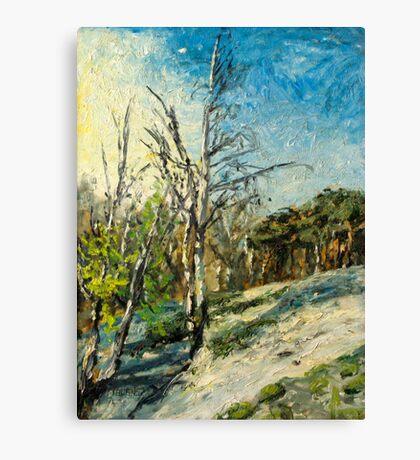 Spring at Upper Selsdon, Surrey, England. Canvas Print