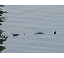 Not Loch Ness  Photographic Print