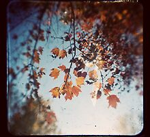 Autumn Ttv by Brandy Ford