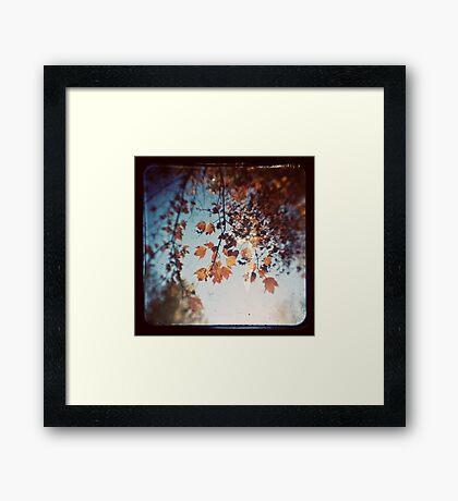 Autumn Ttv Framed Print
