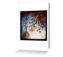 Autumn Ttv Greeting Card