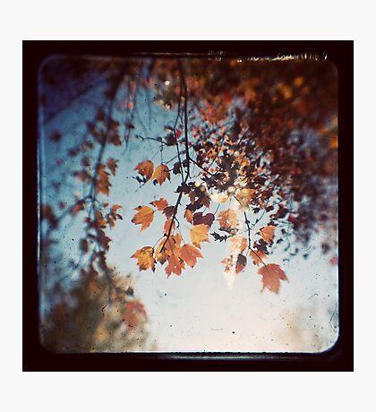 Autumn Ttv Photographic Print