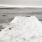 Snowy Pier by Mary Ann Reilly
