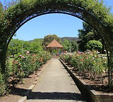 Down the Path, Lithgow Queen Elizabeth Park by ©Josephine Caruana