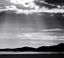 Rays of Light by David Pringle