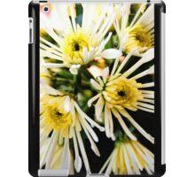 Starburst iPad Case/Skin