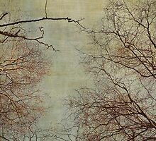 Un hiver by Anne Staub