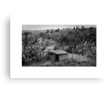 Home on the Paddy Canvas Print