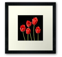 Red Tulips against a Black Background Wall Art Framed Print