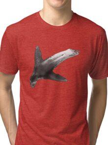 see-lion Tri-blend T-Shirt