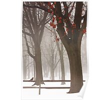 WINTER IN THE WOODS Poster