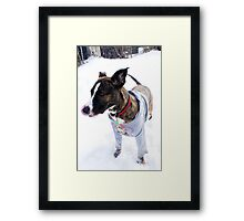 I can touch my nose with my tongue Framed Print