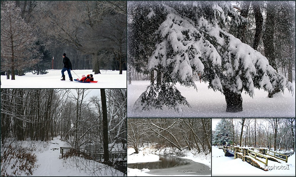 """""""Winter In The Park Collage"""" by kkphoto1"""