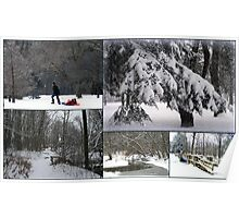 """Winter In The Park Collage"" Poster"