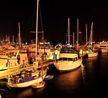 Marina At Night by Stacy Reckard
