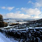 Sweeping Road, Gnat Hole, Glossop by Mark Smitham
