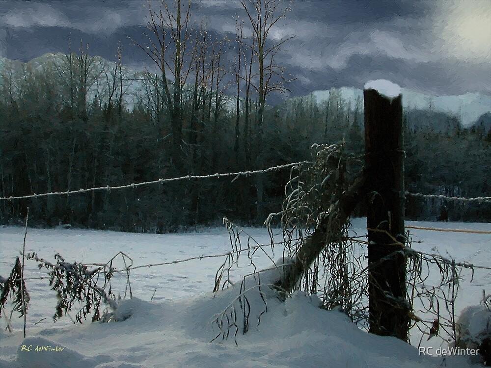 Weeping Winter Moon by RC deWinter
