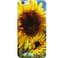 Bright Yellow Sunflower iPhone Case/Skin