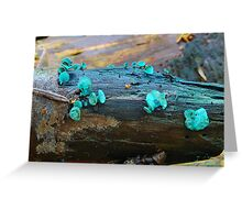 Green Elf Cup. Greeting Card