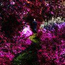 A Wander Through an Abstract Impressionists' World by Den McKervey