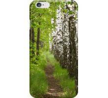 beautiful footpath in the forest iPhone Case/Skin