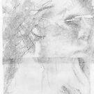 Portrait Study. by nawroski .