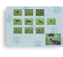 Contact Sheet Canvas Print