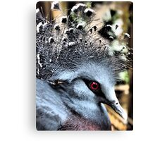 Feathers & Lace Canvas Print