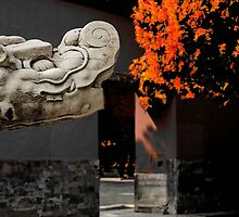 The Year of the Dragon by Patrick Monnier