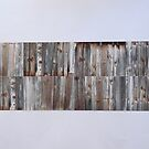 Wooden Wall by Joan Wild