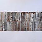 Wooden Wall by Joan Wild