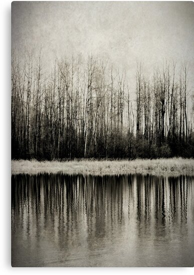 Solitude Revisited by Annie Lemay  Photography