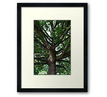Strong arms Framed Print