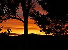 DAYS END.............! by Roy  Massicks