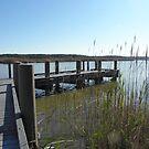Surry County Dock by AJ Belongia